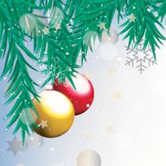 Réseau Solidaire : Réveillon de Noël à la Ville du Bois